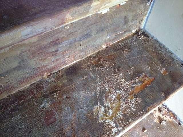 Trap Tapijt Verwijderen : Lijm verwijderen van houten trap 13 treden amstelveen